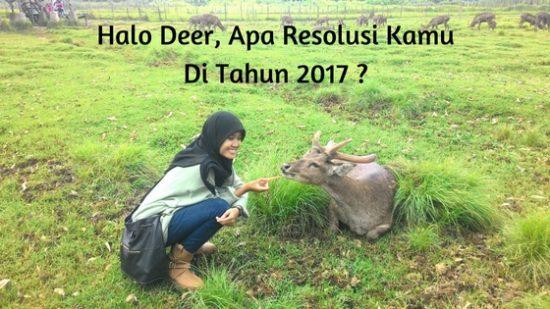 Resolusi 2017, Untuk Hidup Yang Lebih Hidup