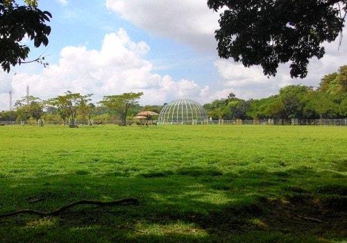 Taman Rusa Pusri Palembang