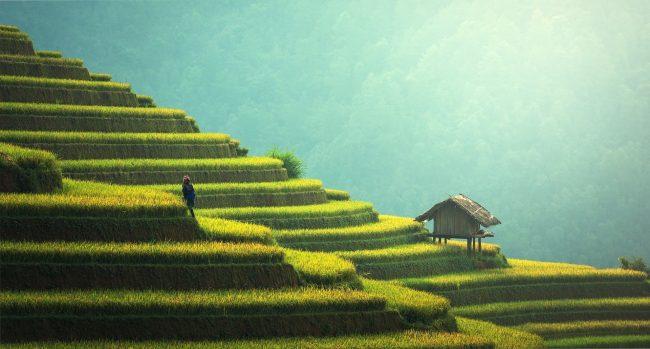 4 Pertimbangan Penting dalam Memilih Paket Liburan ke Bali Terbaik
